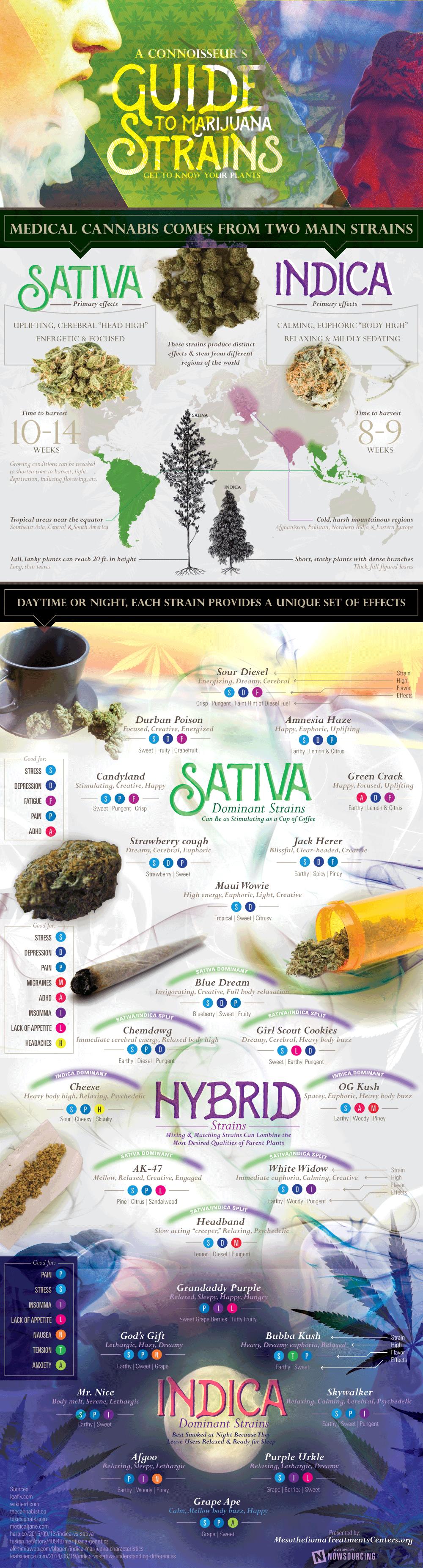 marijuanastrains